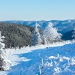 Morning winter mountain landscape — Stock Photo #22765752
