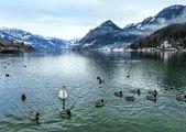 Alpine winter lake view — Stock Photo