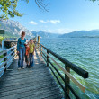 Traunsee summer lake (Austria). — Stock Photo #23344694