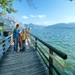 Traunsee summer lake (Austria). — Stock Photo