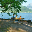 Traunsee summer lake (Austria). — Stock Photo #23344776