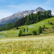 Irrigation water spouts in Summer Alps mountain — Stock Photo