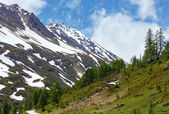 Summer mountain landscape with snow (Alps, Switzerland) — Stock Photo