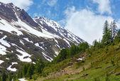 Summer mountain landscape with snow (Alps, Switzerland) — Stockfoto