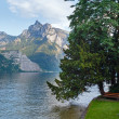 Traunsee summer lake (Austria). — Stock Photo #23669697