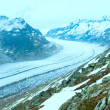 Great Aletsch Glacier (Bettmerhorn, Switzerland) — 图库照片
