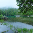 Small mountain forest lake. — Stock Photo