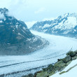 Great Aletsch Glacier (Bettmerhorn, Switzerland) panorama. — Stock Photo