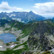 Summer Tatra Mountain panorama, Poland — Stock Photo #25332371