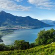 Lake Como summer panorama (Italy) — Stock Photo