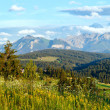 Stock Photo: Summer mountain evening country panorama