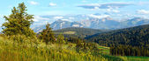 Summer mountain evening country panorama — Stock Photo