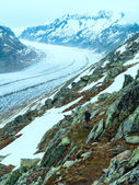 Great Aletsch Glacier (Bettmerhorn, Switzerland) — Stock Photo