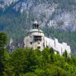 Alps mountain castle summer view — Stock Photo