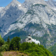 Alps mountain castle summer view — Stock Photo #31086699