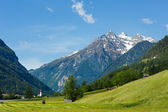 Summer Alpine country view — Stock Photo
