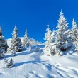 Morning winter mountain landscape — Stock Photo #31392119