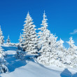 Morning winter mountain landscape — Stock Photo #31392445