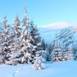 Sunrise winter mountain landscape — Foto de Stock