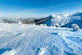 Paysage de montagne avec des arbres enneigés l'hiver — Photo