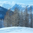 Stock Photo: Winter grove near Dachstein mountain massif