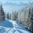Morning winter misty mountain landscape — Stock Photo