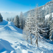Morning winter misty mountain landscape — Stock Photo #32034927