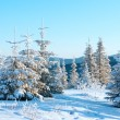 Stock Photo: Sunrise winter mountain landscape