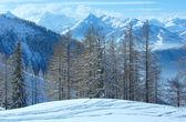 Arboleda de invierno cerca del macizo de la montaña de dachstein — Foto de Stock