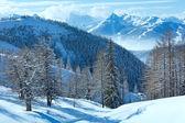 Bosque de invierno cerca del macizo de la montaña de dachstein — Foto de Stock