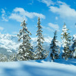 Stock Photo: Winter mountain panorama.