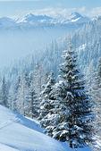 Morning winter misty mountain landscape — Stock Photo