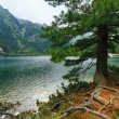 Popradske Pleso (Slovakia) summer view. — Stock Photo