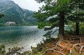 Popradske Pleso (Slovakia) summer view. — Stockfoto