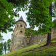 Lubovna Castle (Slovensko). — Stock Photo