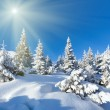 Morning winter mountain landscape  — Stockfoto
