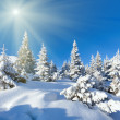 Morgen Winter Berglandschaft — Stockfoto