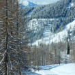 Winter forest near Dachstein mountain massif — Stock Photo