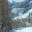Stock Photo: Winter forest near Dachstein mountain massif