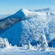 Winter mountain panorama with snowy trees — Stok fotoğraf