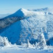 Winter mountain panorama with snowy trees — Stock Photo