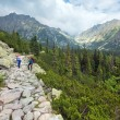 High Tatras (Slovakia) summer view and family on footway. — Stock Photo