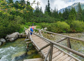 Stream and family on wooden bridge (High Tatras, Slovakia) . — Zdjęcie stockowe