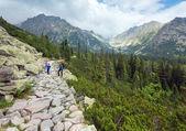 High Tatras (Slovakia) summer view and family on footway. — Stock Photo