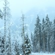 Winter mountain landscape  (Austria, Tirol). — Stock Photo