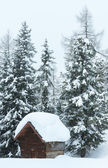 Winter misty mountain and wood shed — Stock Photo