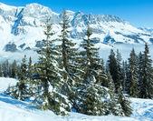 Zataženo zimní horské krajiny — Stock fotografie