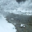 Stock Photo: Winter mountain river panorama.