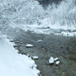 Winter mountain river panorama. — Stock Photo