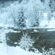 Winter mountain river landscape — Stock Photo